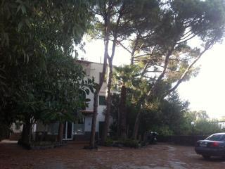 Appartamento in villa, Ischia Porto
