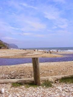 Charmouth is great for fossil hunting