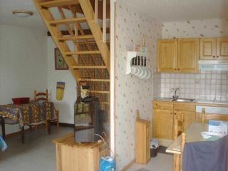 appartement 65m2 à VALLOUISE massif des ECRINS, Vallouise