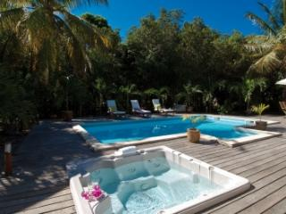 Extravagant 3 Bedroom Villa in Terres Basses, St. Maarten