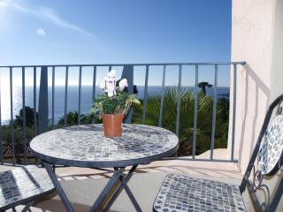 1 bed apartment in private seafront complex, Cannes