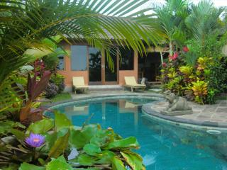 Orchid Bungalow Ubud -pool, 2 brm, ricefield view