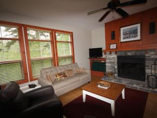 Newly Renovated 3 Bdrm, 2 Bath  Condo at Tremblant