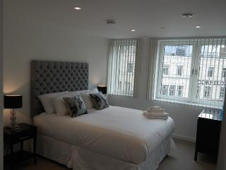 Two Bedroom Apartment old street, London