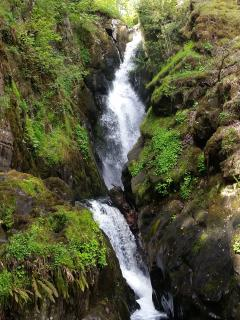 Aira Force waterfall less then a 30 minute walk!