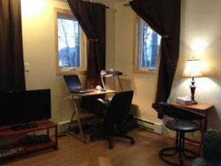 Space multimedia; television flat screen TV, DVD player, books, desk, internet wireless.