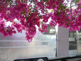 airstream backyard private eco chic lovely, Los Ángeles