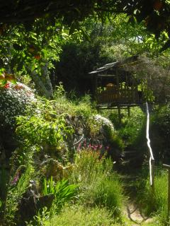 Springtime garden scene, showing way to yurts and kids playhouse, with the scent of orange blossom!