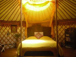 Nature Retreat in stylish Mongolian Yurts