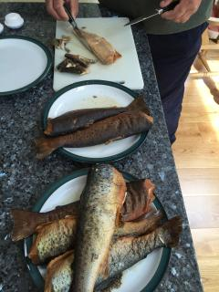 Another good days catch on Loch Earn, then home smoked - delicious!