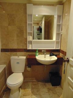 Th Bathroom in the master bedroom