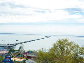 The View overlooking the longest pleasure Pier in the world!