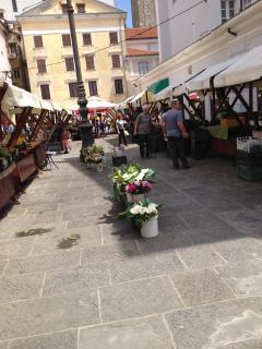 Farmer's market at your doorstep