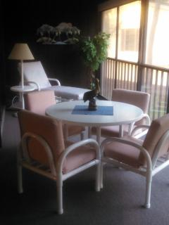 Beautiful 8x30 Lanai with full wooded view