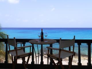 Sea Dreams - Harbour Beach Village, St. Croix