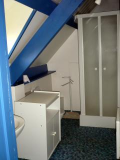 Etage: Salle de Bains ( douche, WC, Lavabo)