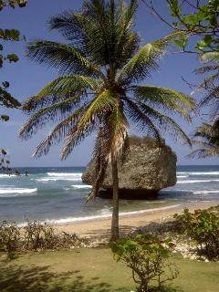 Bathsheba, the surfing mecca is a 10 minute drive