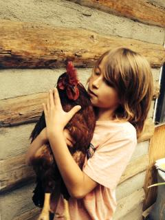Our rooster is called King of Hearts, not a mean streak