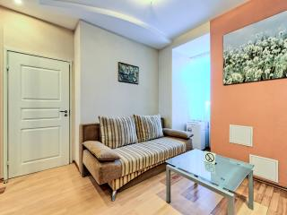 Modern elegant one bedroom with Jacuzzi, San Petersburgo