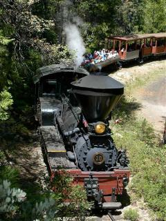 Take a ride on the 'Sugar Pine Railroad' (Summer only)