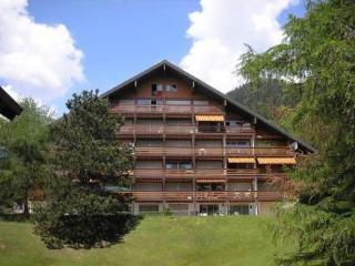 Appartement Cosy Domaine des Rochegrises Châlet Agate 1er étage, Villars-sur-Ollon