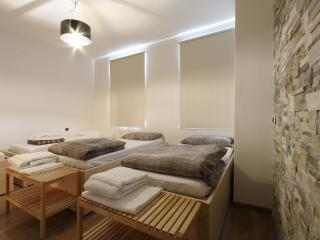 Bed & Wellness Fisterre - Laconicum Room, Belluno