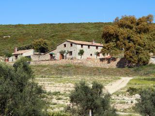 Finca Ecologica DE 40 hectareas, con piscina, Enguera