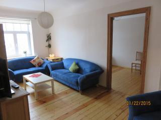 Comfortable quality modern 3 room apt., Riga