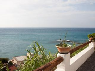 Room with direct beach access and garden sea view