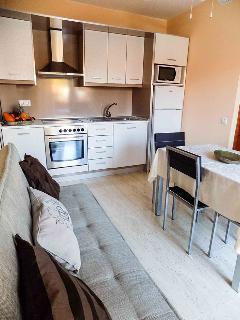 Un salón-cocina en un mismo espacio limpio y funcional