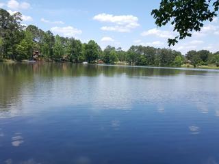 South Atlanta Lake House 15 miles S of Atlanta