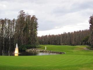 5 Room Golf SPA Villa Suite close to Busch Gardens
