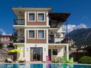 Villa Dalriada - Luxury Villa, Ovacik