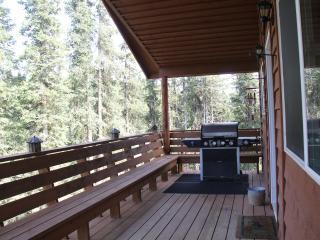 Coal Creek Cabins.....Cabin rental in Alaska's quiet wilderness setting
