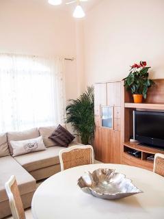 Este cómodo sofá-cama sirve para que dos huéspedes más puedan alojarse en la casa