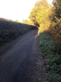 The lane leading to the Barn