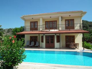 Villa Pinar