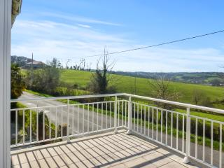 Charming country house just outside the spa town of Salies-de-Béarn, w/terrace & large garden, Salies-de-Bearn
