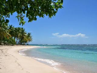 Beachy bungalow 50m from Plage de Petite Anse in Basse-Terre, with 2 bedrooms and sea-view terrace, Pointe-Noire