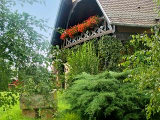 Spacious apartment in Alsace with spectacular garden views from its terrace, 20min from Strasbourg, Hochfelden