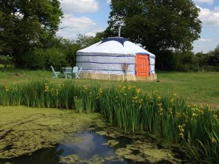 Beautiful, Cosy, Authentic Mongolian Yurt to rent, Golden Cross