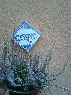 logo appartamento Geranio