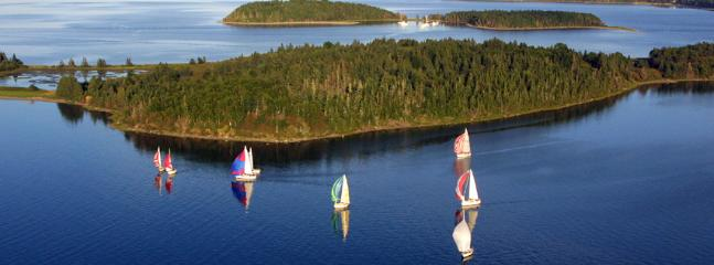 Aerial sailboat race from yarcht club.