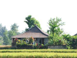 Devi's Place Ubud- perfect hideaway Jepun Bungalow