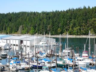 Oceanfront Suite - Excellent Nanaimo location!