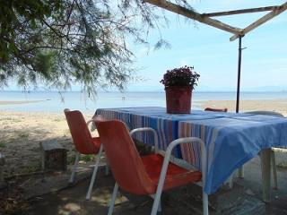 two serene, secluded studios for 4 to 6 persons 150 meters from the beach