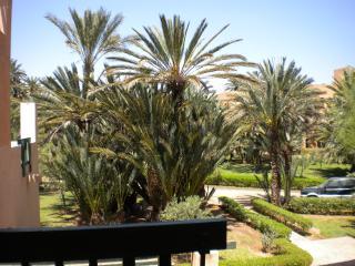 Une terrasse dans la palmeraie