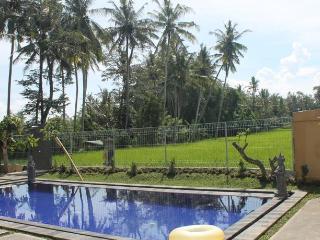 Long Lane Homestay Bali, Peliatan