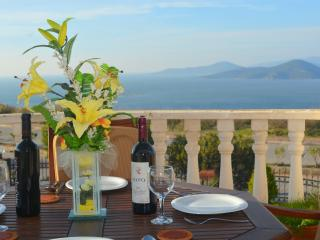 Luxury 2 bedroom apartment near Bodrum in Turkey