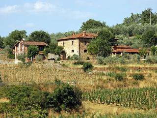Casa Loggia 1 Tuscan rental near Arezzo - Italy, Pergine Valdarno